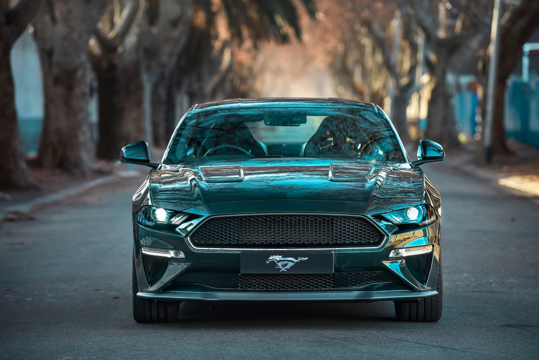 The New Ford Mustang >> First Drive In The New Ford Mustang Juliet Mcguire